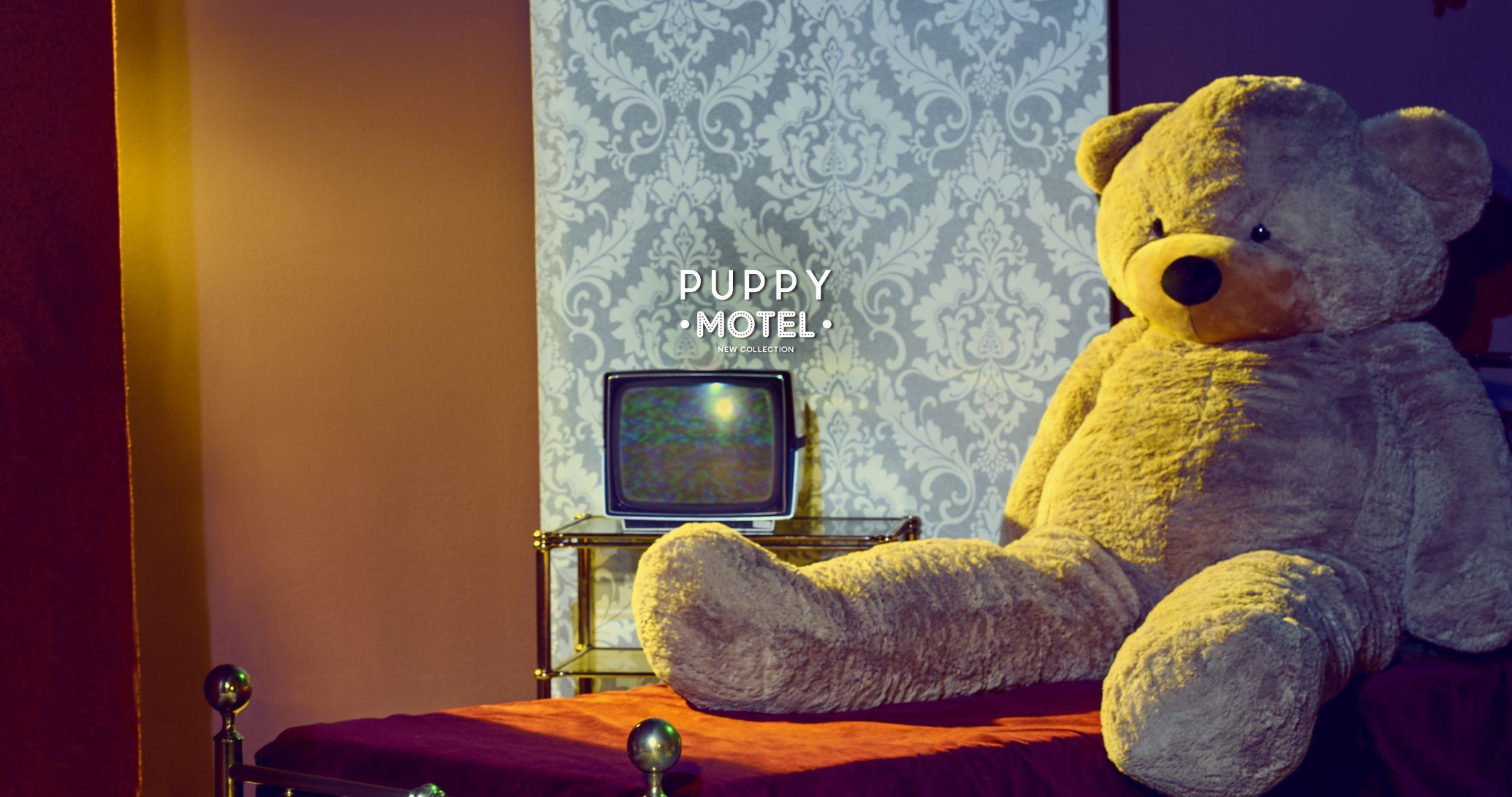 PUPPY MOTEL  video di collezione